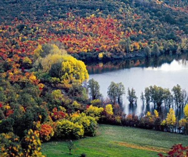 Riserva dei Laghi di Doberdò e Pietrarossa in autunno
